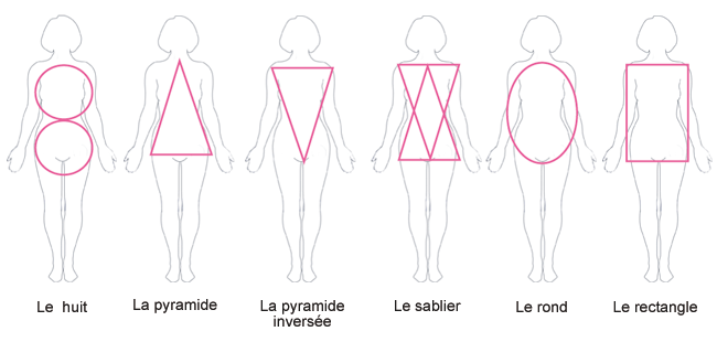 Morphologie morphology